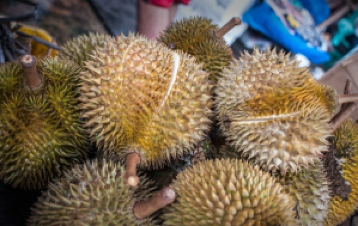 aid414475-728px-Eat-Durian-Step-1Bullet2