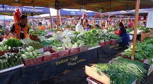 Fresh-Vegetables-Pasar-Tani-Mega-Taman-Melawati2-470